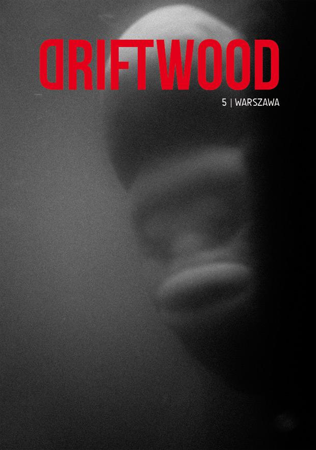 driftwood-5-warsaw