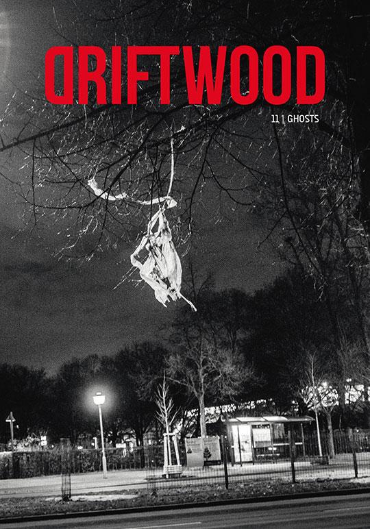 driftwood11